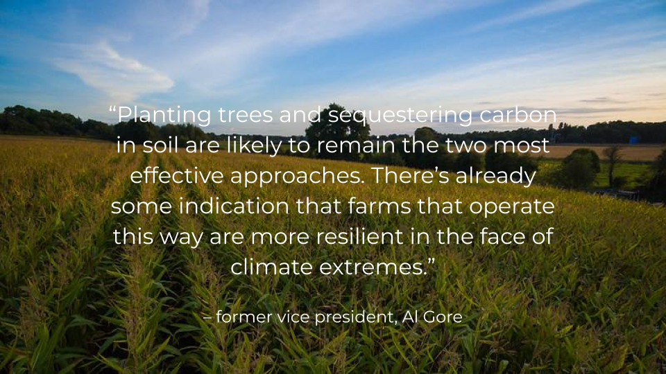 Al Gore quote_Trussell farmland by William Hook