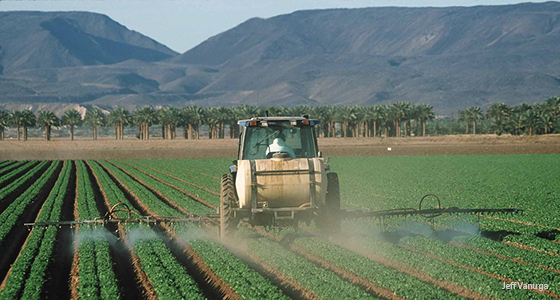 Spraying pesticides on lettuce AZ_Jeff Vanuga
