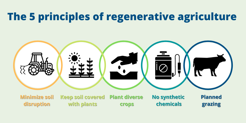 The 5 principles of regenerative agriculture