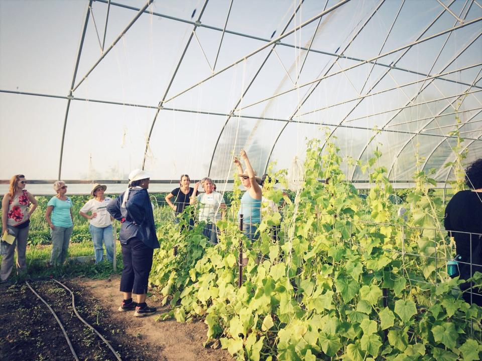 Women in Agriculture farm