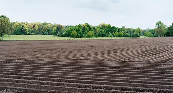 Healthy soil on farm by Kai Oberhauser